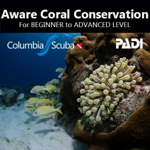 Aware Coral Conservation
