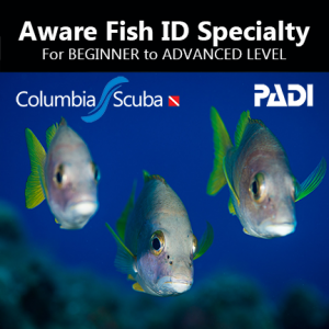 Fish ID Specialty